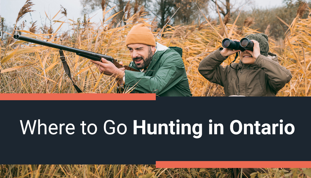 Where to Go Hunting in Ontario