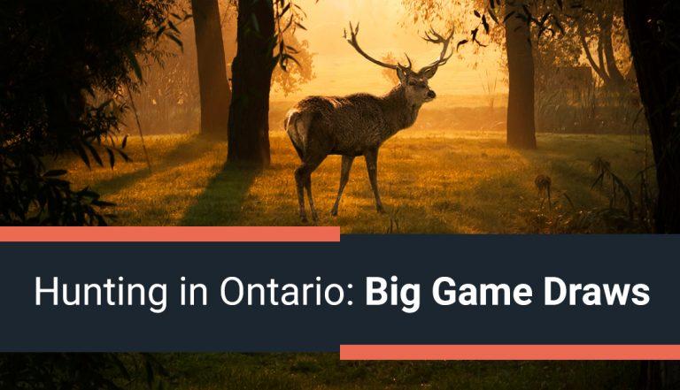 Hunting in Ontario: Big Game Draws